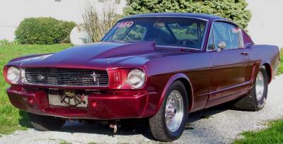 Mustang 65 66
